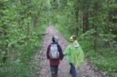 Правила безопасности при прогулках по лесу с детьми