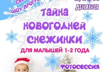 Тайна Новогодней Снежинки