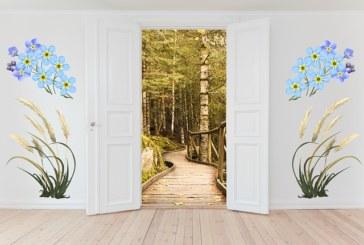 Как выбрать доводчик двери