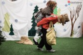 Театральная студия — самый лучший вид развивающих занятий для ребенка!