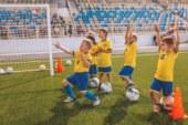 Международная футбольная школа «Юниор»  в Чехове