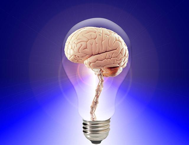 Значение, роль и теории памяти