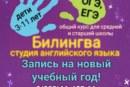 Студия английского языка «Билингва» приглашает на групповые занятия английским языком