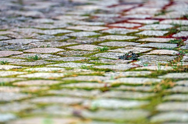 Укладка тротуарной плитки в Чехове
