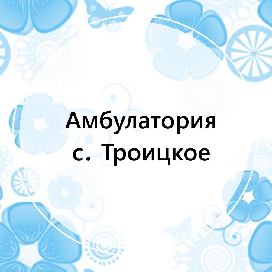 Поликлиника с. Троицкое