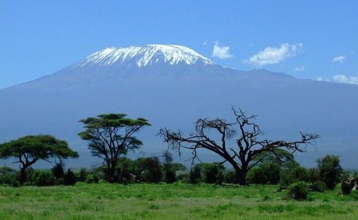 Занзибар (Танзания). Скажи Африке: «Я еду!»